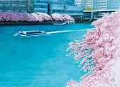 表紙_川辺の春.jpg